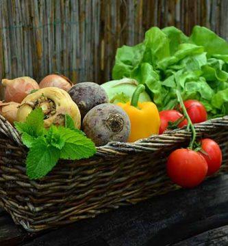 verduras para bajar de peso