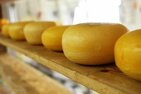 alimentos que elevan el colesterol