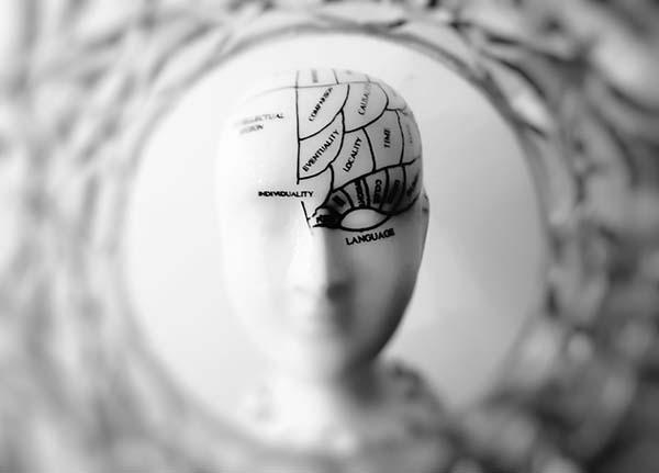 cual es la diferencia entre el cerebro y la mente