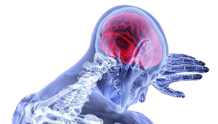 qué diferencia hay entre el cerebro y la mente